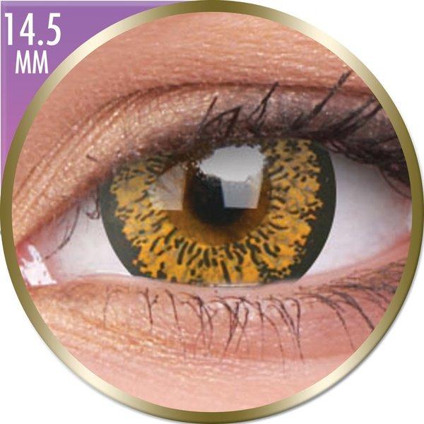 Phantasee Big Eyes - Baby Brown (2 St. Monatslinsen) – ohne Stärke